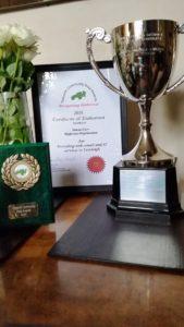 HIgthrees win Tidworth Community Area Award