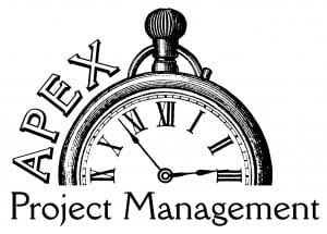 Apex Project Management Logo It Support Web Hosting